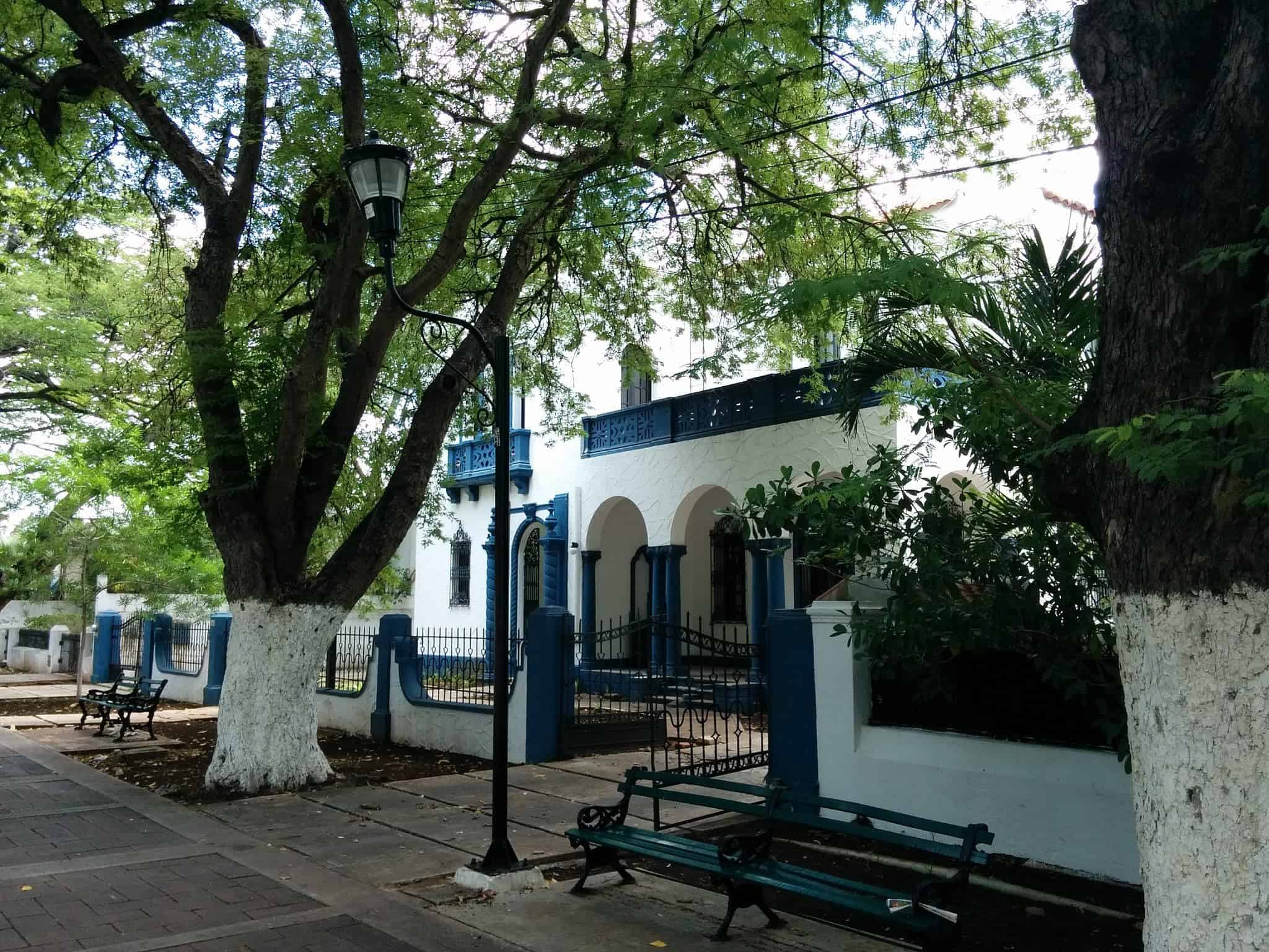 14 Must Do's in Merida   Things to do in Merida the safest city in Mexico