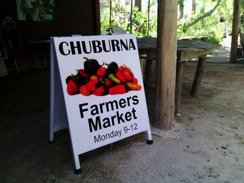 the Chuburna mercado and farmers market Mexico