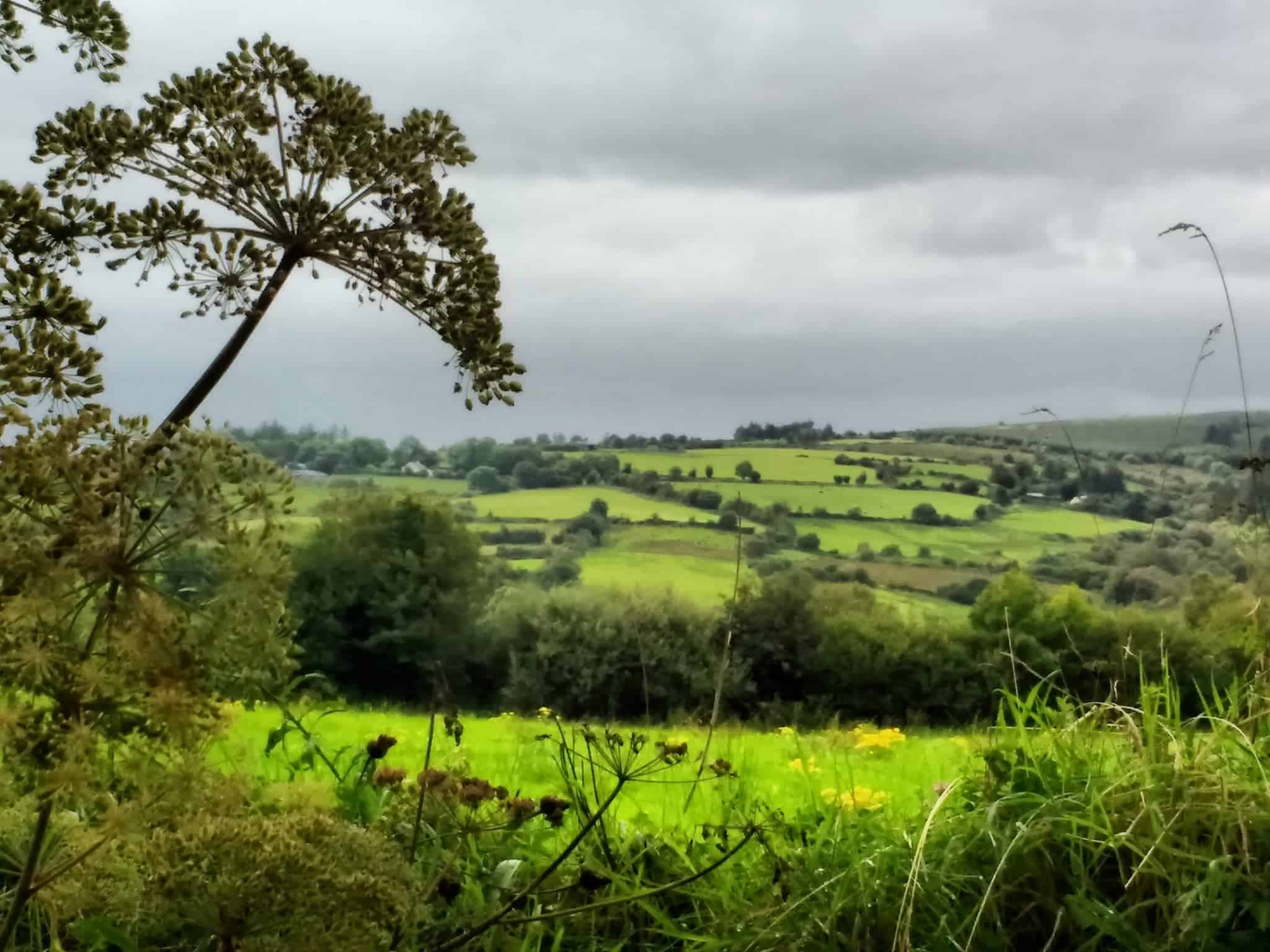 touring Tipperary