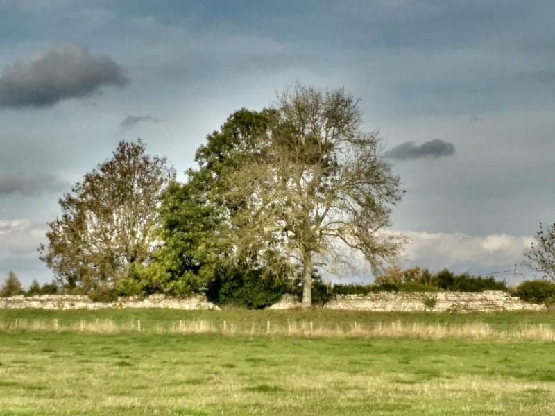 remains of the walls at Silchester