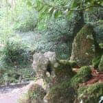 Birr Castle Ireland - Visiting  the distinguished Birr Castle
