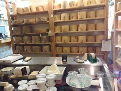 cheese shop displaying wheels of parmesan at Granville Island Market