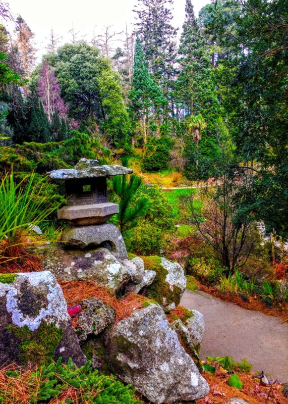the Japanese Garden at Powerscourt 7 days in Ireland - Ultimate Dublin to Waterford Itinerary