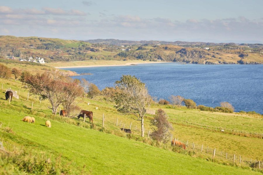fancy living on the Wild Atlantic Way when you retire to ireland?