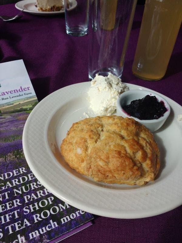 lavender scones and lemonade in Yorkshire