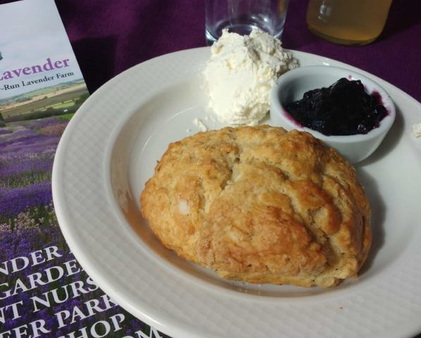 Lavender scones in Yorkshire travelling for flowers