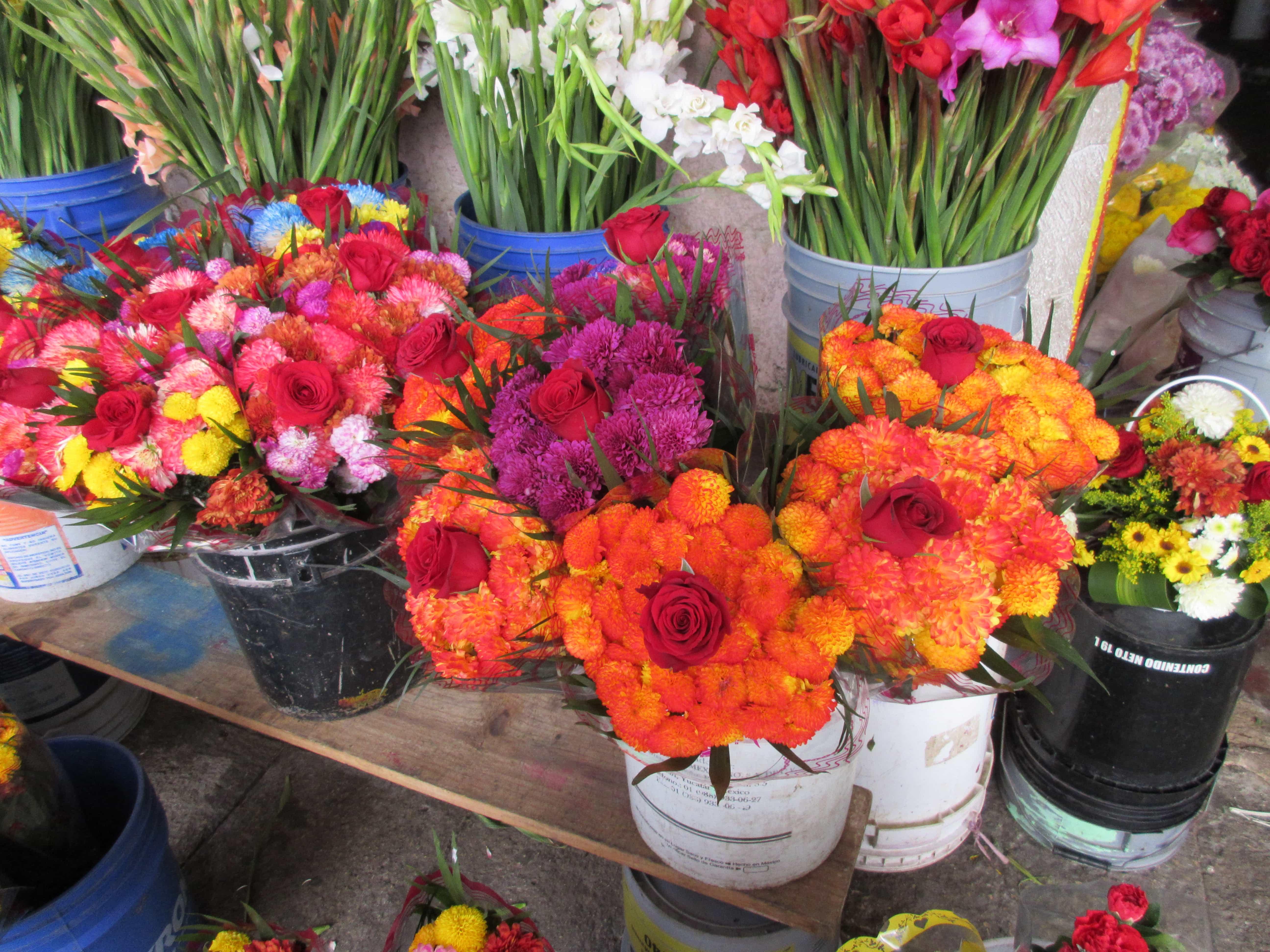 touring the Lucas Galvez Market in MErida