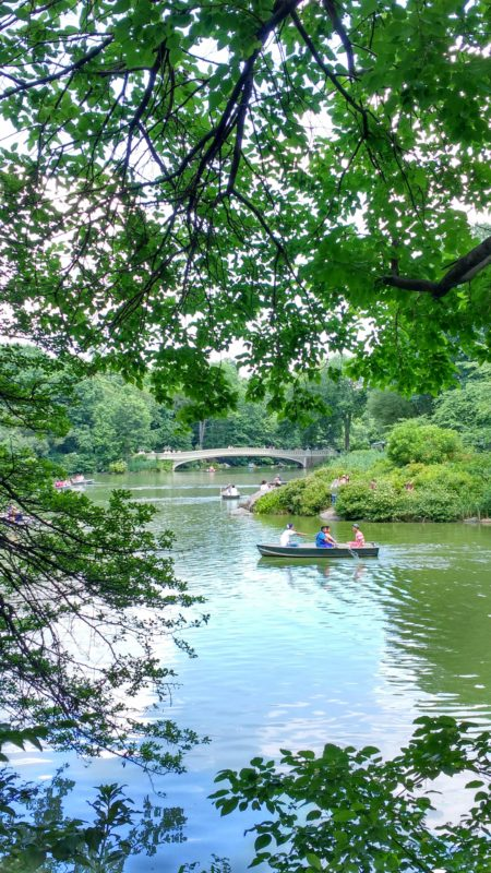 rowing on the Central Park Lake