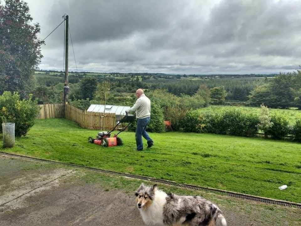 our Tipperary housesit