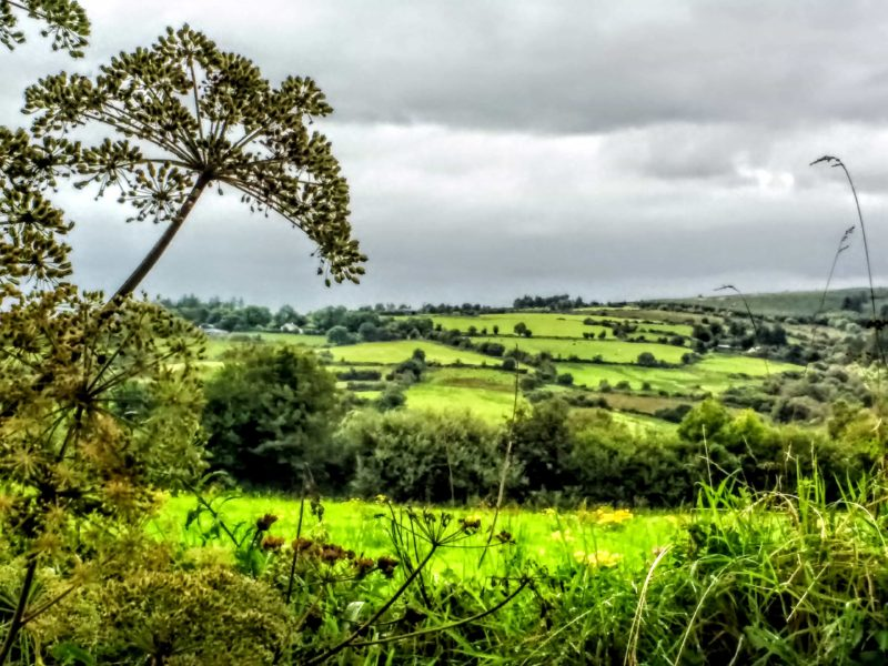 the Golden Vale of Tipperary one of the most magical areas in Ireland