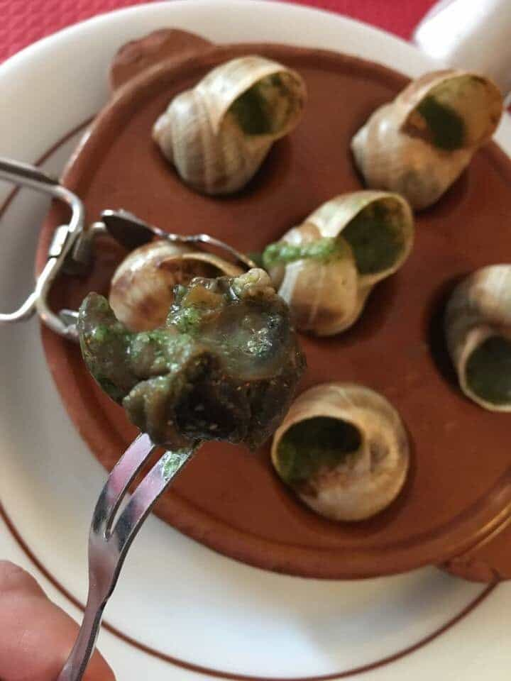 the eating of weird food may include this plate of snails in France a totally acquired taste