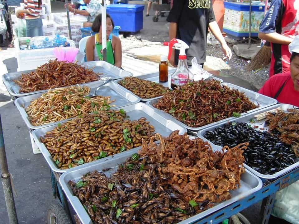 17 of the Most Unusual Foods Around the World | Foodie Travel
