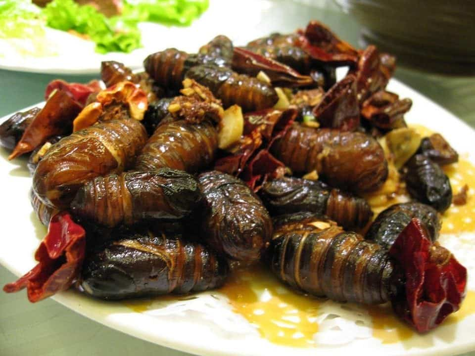 fried bugs one of 17 of the Most Unusual Foods From Around the World