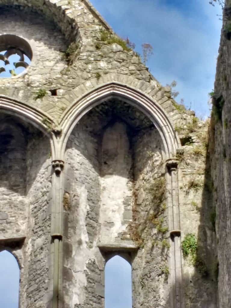 from the Rock of Cashel you can see Hore Abbey, these are the remains of the vaulted arches