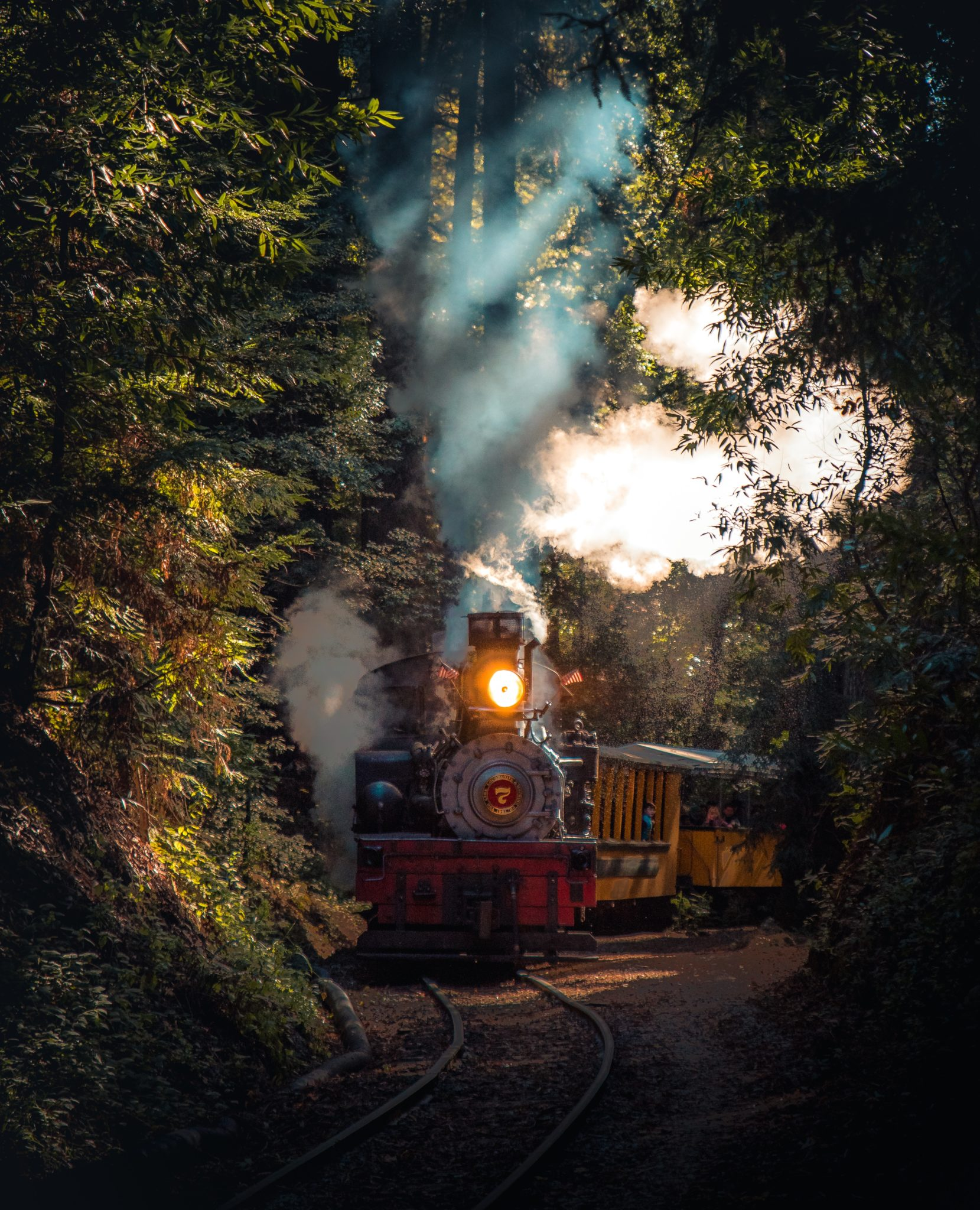 Harry Potter Trains a great Steam Journey on the Hogwarts Express
