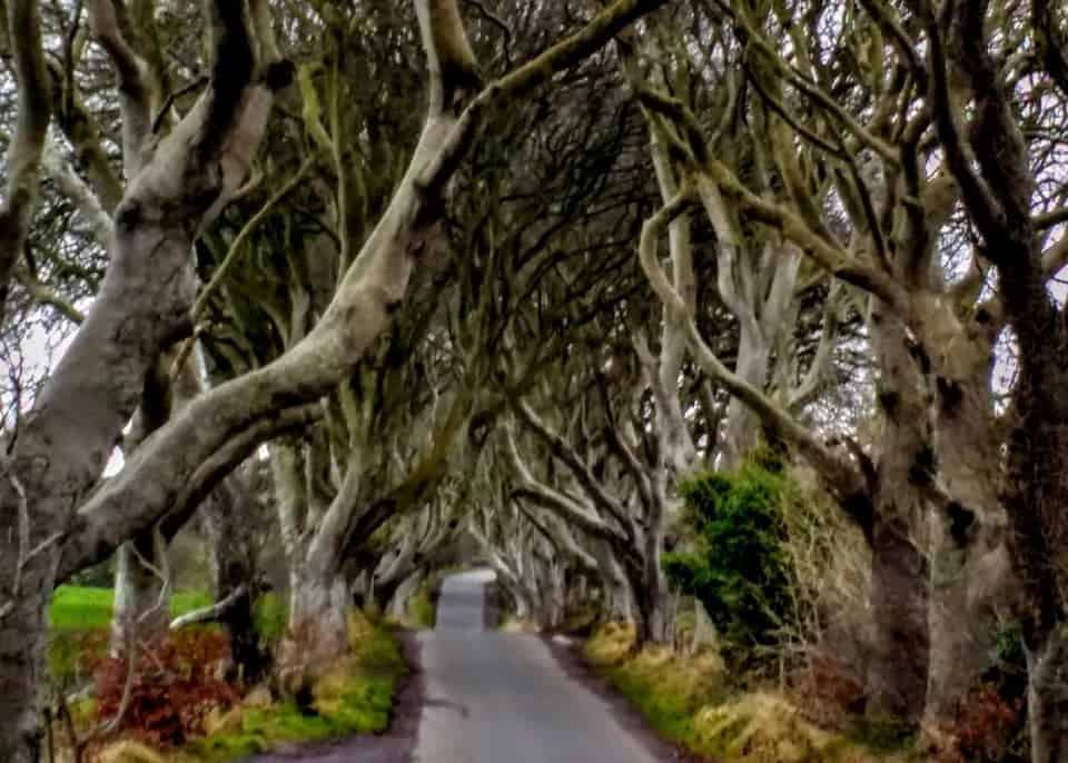 Glorious Game of Thrones Tour Ireland | How to see all 32+ GOT sites
