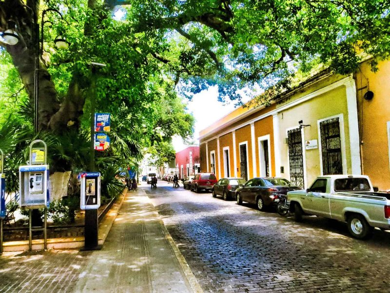 Things to do in Merida walk in Santa Lucia Parque with its colourful houses