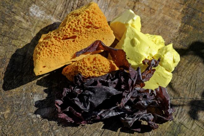 Traditional foods of Ireland Dulse and Yellowman