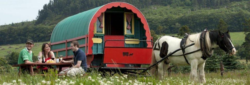 stay in a gypsy caravan in Ireland