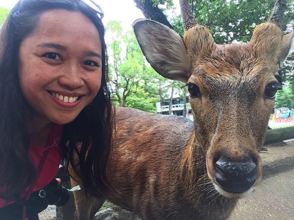 Animal Friendly Travel & Tourism - Travel Writers on their animal encounters