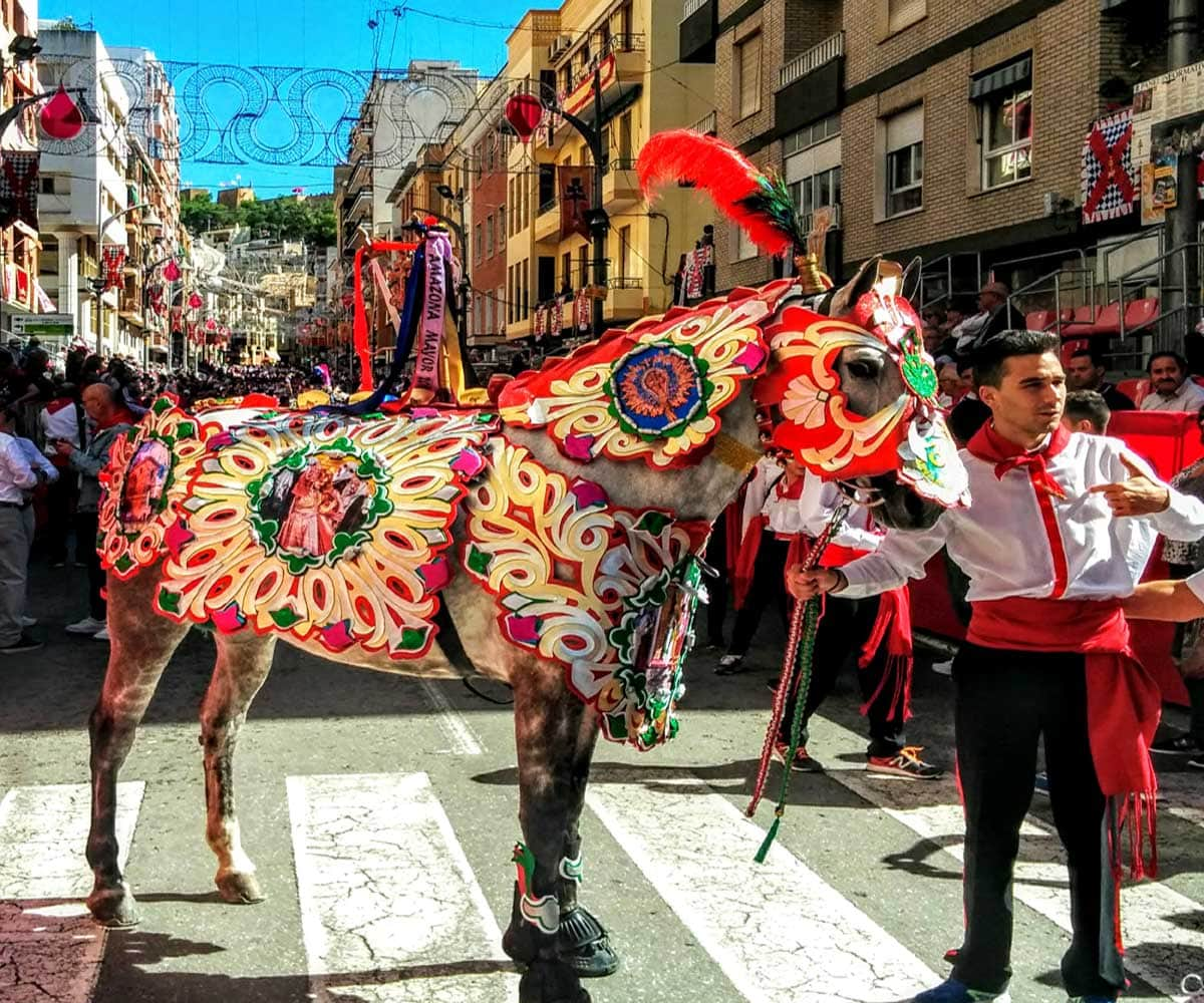 caravaca de la Cruz Wine Horses festival the decorated horses