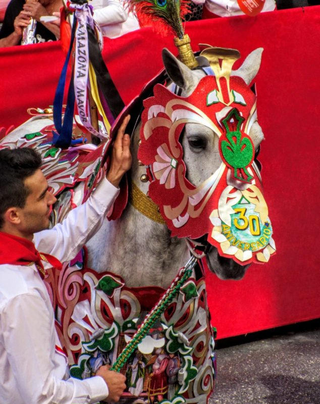 a decorated horse for the Wine Horses Festival