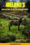 Magical Places in Ireland to see