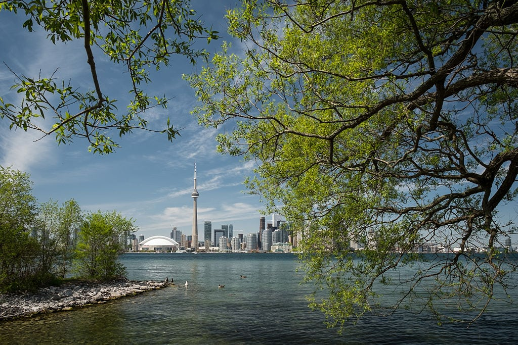 A view of Toronto across the lakes an article talking about Canadian Food