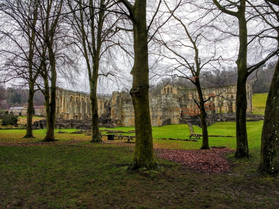 Rievaulx Abbey full view of the abbey between the trees
