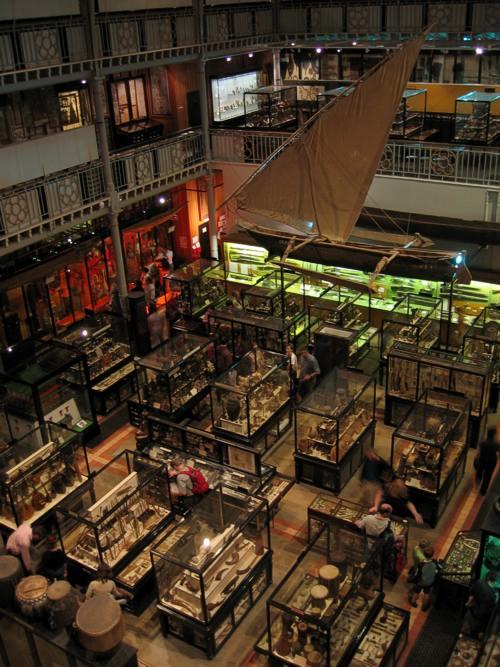 interior of Pitt River Museum Oxford