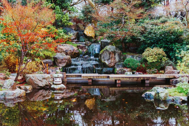 Kyoto garden, a japanese style garden with a waterfall in Holland Park, London