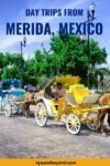 Merida tours the best day trips from Merida Mexico