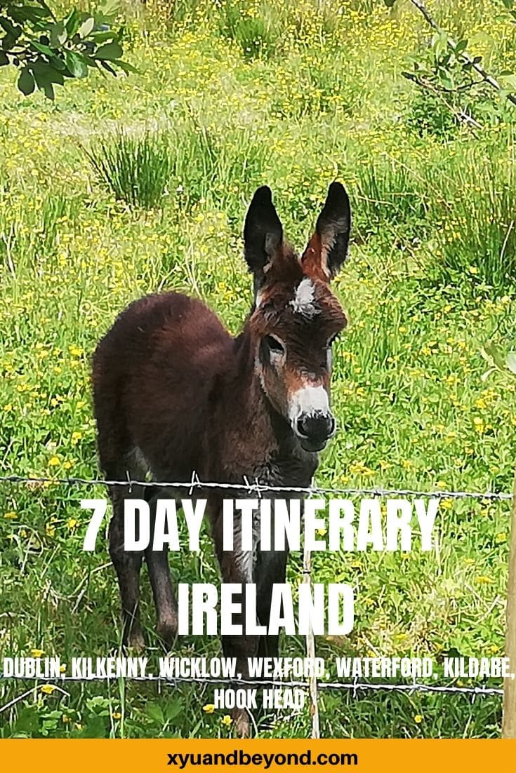 7 days in Ireland - Ultimate Dublin to Waterford Itinerary